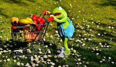 Gesunder Ernährung Einkaufswagen