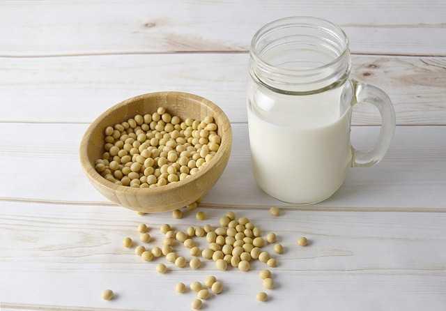 gesunde milch alternative soja